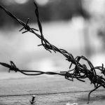 La manutenzione dei cavi inox nelle applicazioni di design